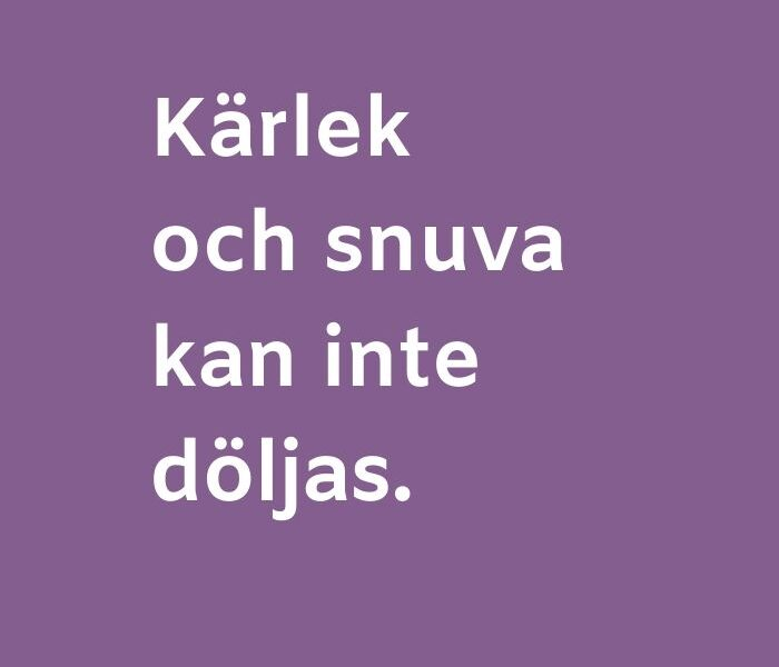 kärlekscitat på svenska